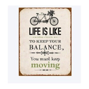 life-like-bicycle-balance